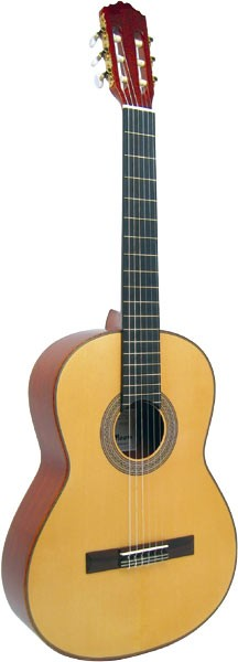 Delgada Konzertgitarre DG-25S
