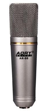 Professionelles Studio Recording Mikrophon