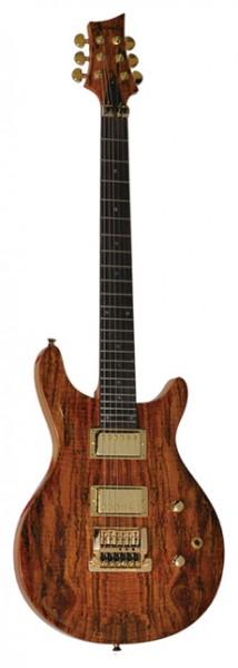 E-Gitarre SUNSMILE Modell SPR K41