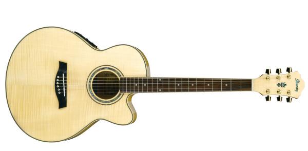Westerngitarre Ibanez AEL20E-NT