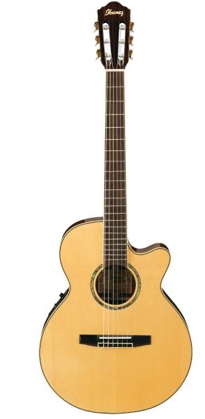 Ibanez Konzertgitarre AEG10NE-NT