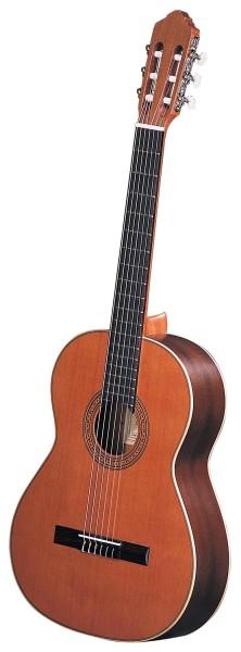 Ortega Konzertgitarre R190G