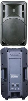 Leem TS12 Speaker passiv
