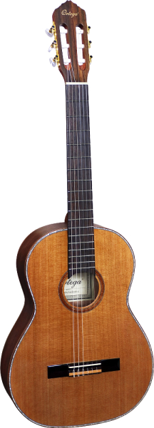 Ortega Konzertgitarre R10CT-LTD-L